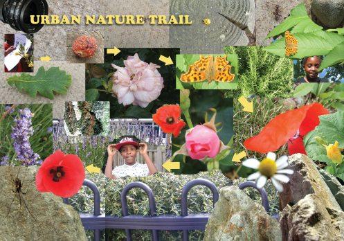 nature-TRAIL-web